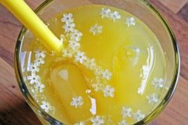 refreshment-833363__180